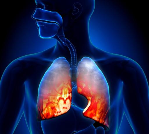 Какие показатели крови указывают на пневмонию у взрослых