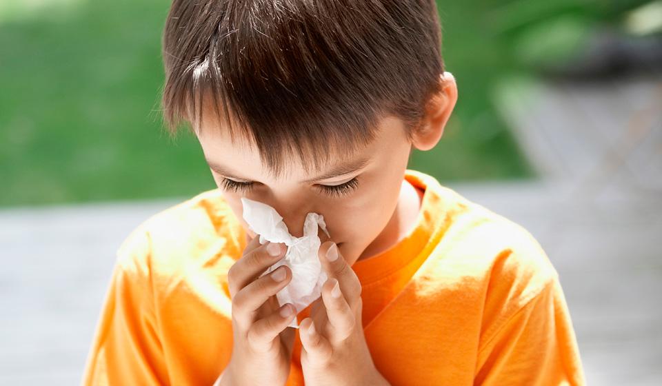 Аллергический насморк - симптомы и лечение у взрослых и детей, препараты | здрав-лаб