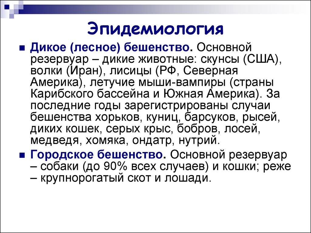 Артериальная гипертензия (гипертоническая болезнь)
