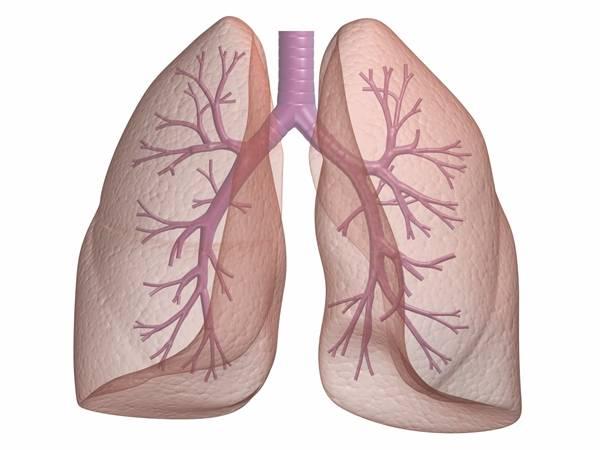 Что такое пневмосклероз легких: симптомы и лечение