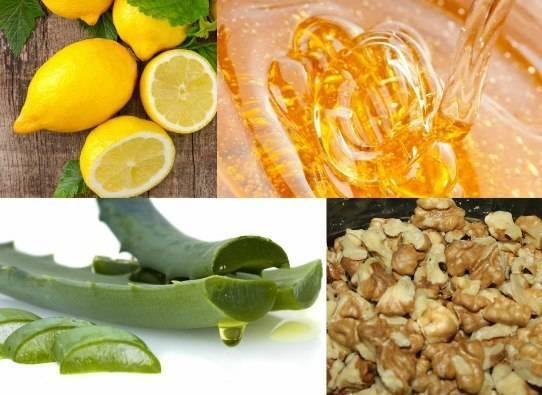 Народные рецепты с алоэ от кашля, польза и ограничения