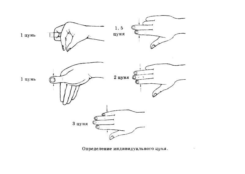 Виды мышечных сокращений