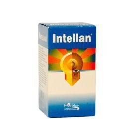 Интеллан