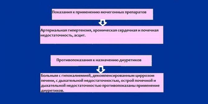 Мочегонные (диуретические) сборы трав в аптеке (фитосборы, урологический и почечный): состав и инструкция