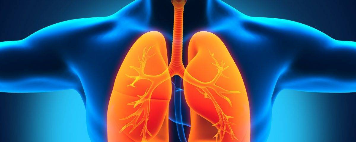 Диагностика туберкулеза при помощи рентгена
