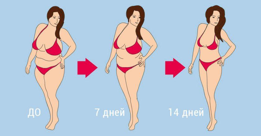 Самые эффективные диеты для похудения: принципы, мифы, топ-5 диет