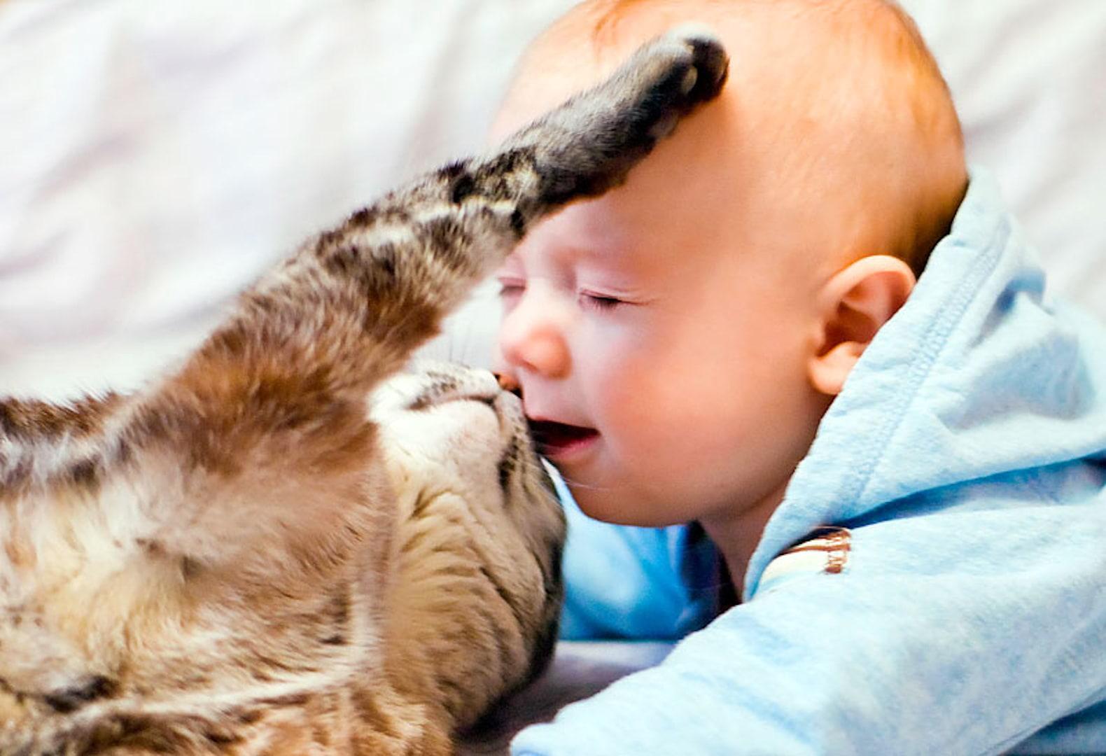 Аллергический насморк у ребенка – симптомы и лечение ринита