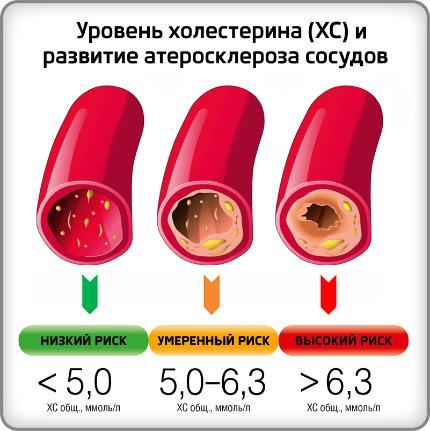 Холестерин - .. стероиды .. информация   что это?   google-info.org