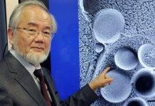 Исцеление по неумывакину: что лечит перекись водорода?