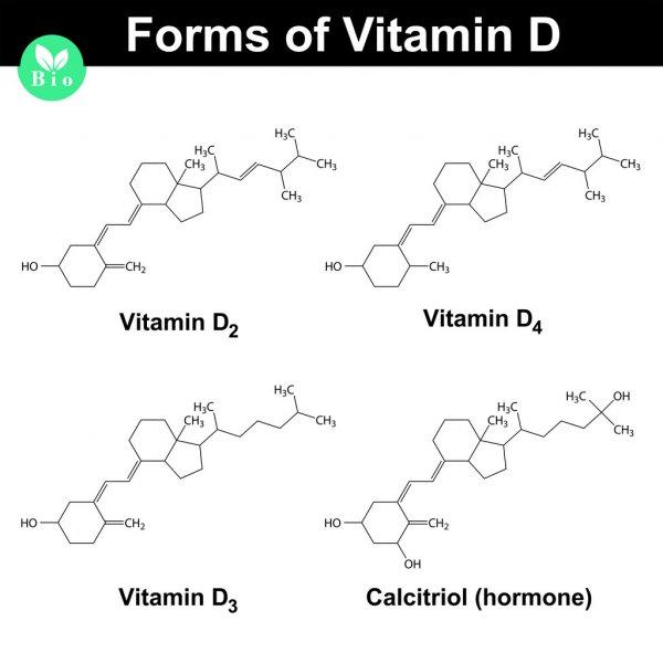 Околощитовидные железы. паратирин. паратгормон. кальцитриол. регуляторные функции гормона околощитовидных желез.