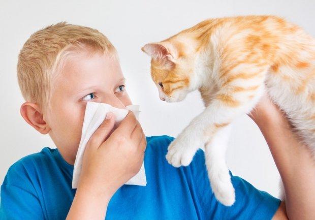 Астма: симптомы у взрослых и как начинается