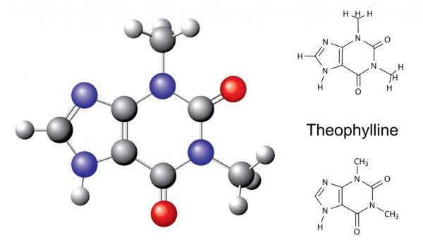 Спазмолитическое средство - «теофиллин»