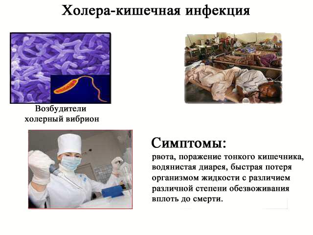 У пациента с холерой живот. холера: симптомы, причины болезни, профилактика и лечение