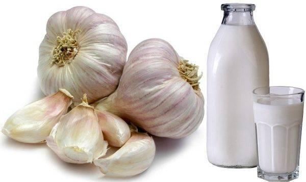 Как варить лук с молоком для лечения кашля: все варианты рецептов