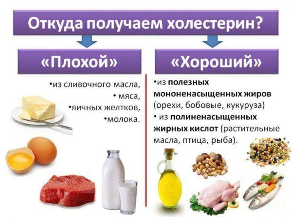 L/o/g/o холестерин природный жирный спирт, содержащийся в клеточных мембранах всех животных организмов. нерастворим в воде, растворим в жирах и органических. - презентация