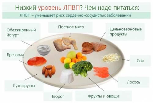 Диета при повышенном холестерине: как составить меню накаждый день для женщин имужчин, списки разрешенных изапрещенных продуктов, пример рациона + отзывы